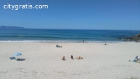 Auckland Surf