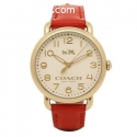Find Now Online Coach Watches for Men in
