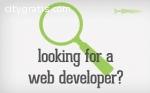 Professional website development & E-com