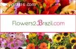 Brazil Florist Send Flowers to Brazil