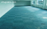 Carpet & Upholstery Cleaning Services |