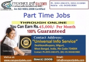 Easy Online Job with a Fat Paycheck!