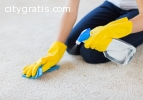 Highly Trained Carpet Cleaning Brisbane