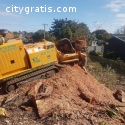 Hire Stump Grinders in Hamilton at Nomin