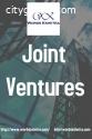 Joint venture services