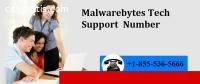 _+1*855*536*5666 Malwarebytes Tech Suppo