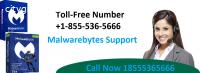 1855(536)5666 Malwarebytes Antivirus sup