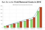 All US Mold Removal San Antonio TX