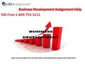 Business Development Assignment Help|USA