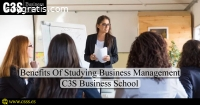 Business Management Scope