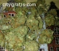 Buy medical ***** strains,Hash oil ,