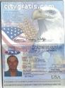 Buy passport, driver license online