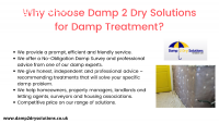 Choose Damp 2 Dry Solutions for Damp Tre