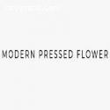 Diy Pressed Flowers