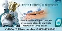 E-Set Antivirus Support +1-800-463-5163