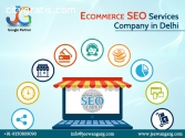 Ecommerce SEO Services Company in Delhi,