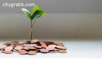 Financial Planner USA- BeniGro LLC