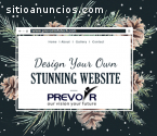 Find Top Website designing companies