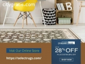 Get the Discount on Dynamic Area Rugs