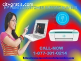 Hp printer Customer Support Number 1-877