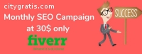 I Will Do Monthly SEO Service Of Your We