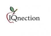 IQnection Web Design & Marketing