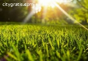 Lawn Care Services Maryland