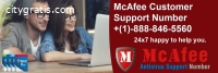 McAfee Support Toll Free Number