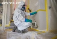 Mold remediation services in Aurora