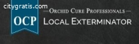 OCP Bed Bug Exterminator Boston MA - Bed