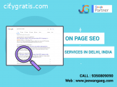 On Page SEO Services in Delhi, India