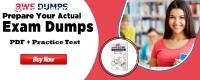 Online MLS-C01 Practice Test