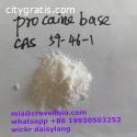 Procaine base CAS 59-46-1