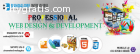 Profesional Website Design and Developme
