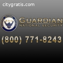Professional Executive Security Downtown