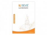 REVE Internet Security Software