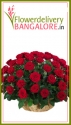 Send Mother's Day Flowers to Bangalore