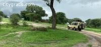 @Tanzania Safaris