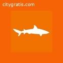 _Tax Shark - Sacramento