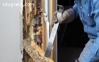 @Termite control in Service