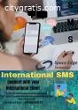 The Best International SMS provider .
