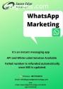 The Best WhatsApp Marketing