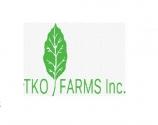 TKO farms-Belize Teak and Cacao Farm