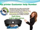 Want Setup Hp printer Customer help numb