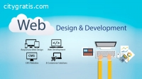Website Software Development Company in