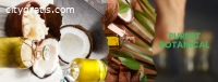 Wholesale Coconut Oil Suppliers | Purest